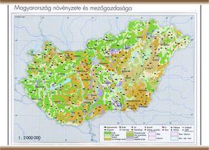 magyarország ásványkincsei térkép KELET TANÉRT KFT magyarország ásványkincsei térkép